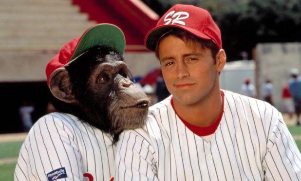 Relación de los monos con los humanos
